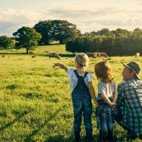 Écologie: comment sensibiliser son enfant au respect de l'environnement