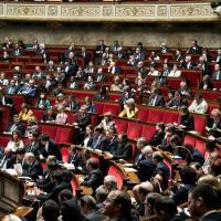 France: des mesures sévères pour les intrusions dans les élevages