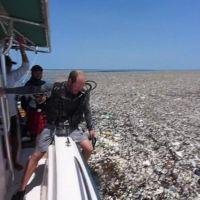 Terrifiant: une mer de plastique dans les caraïbes