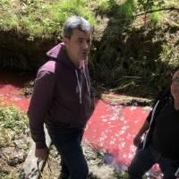 France: les habitants choqués par une rivière de sang animal