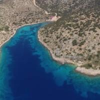 Grèce: le premier sanctuaire au monde pour les dauphins sauvés de la captivité