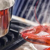 Société: en 2019, on plonge toujours les homards dans l'eau bouillante, en France